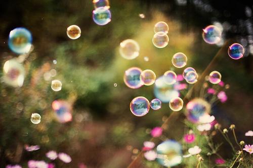 bubble-bubbles-flower-flowers-forest-Favim.com-436584